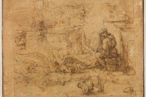 Intorno alla Sala delle Asse. Leonardo tra Natura, Arte e Scienza.